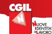 nidil logo